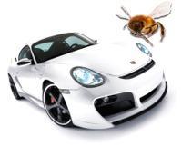 Productos para la limpieza de insectos estrellados en frontal de vehículos